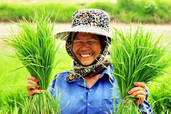 Третий год подряд Блумберг называет Таиланд самой счастливой страной в мире