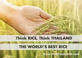 thai rice pic